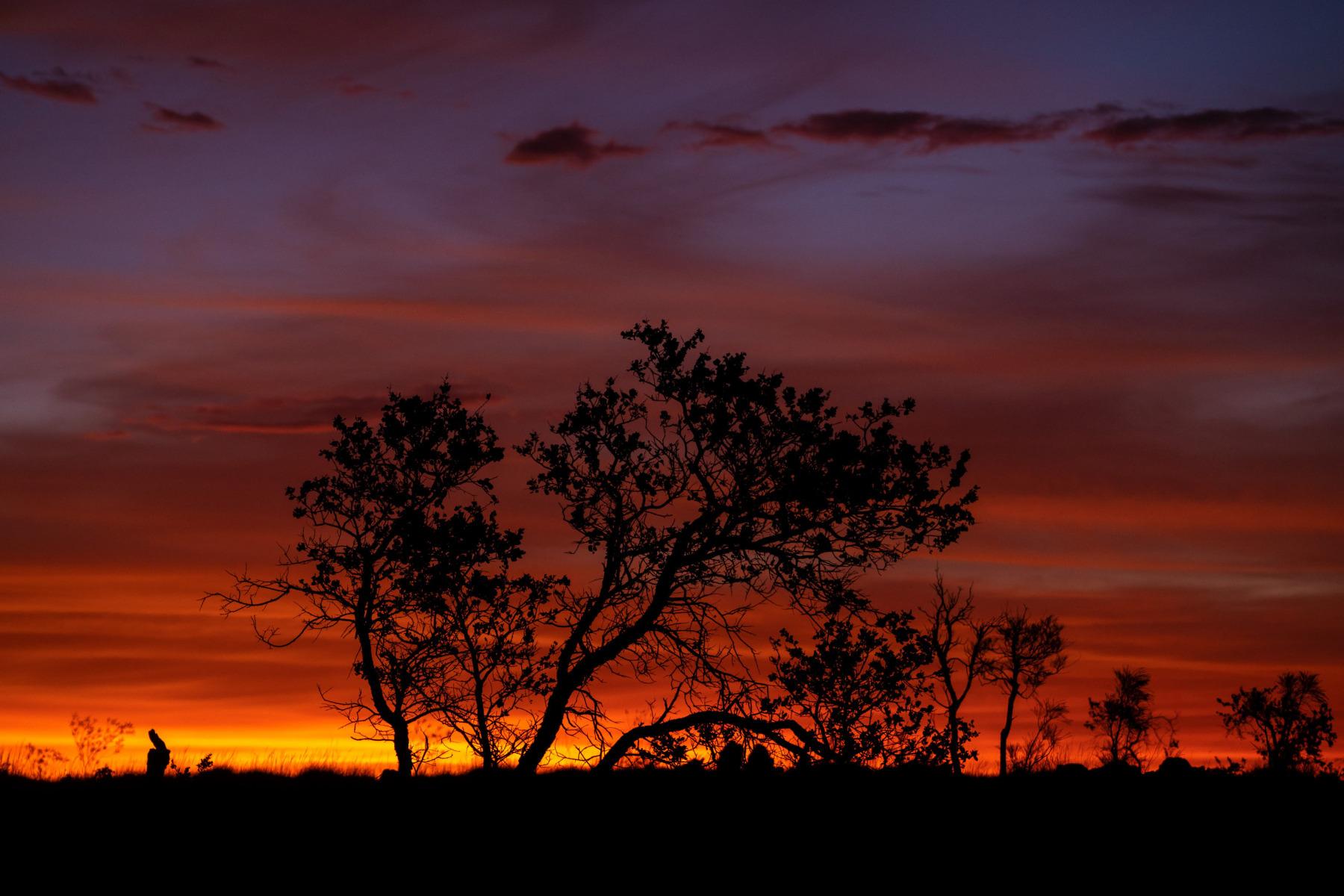 DSC04698_Telfer-Road_nach-Sonnenuntergang
